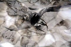 Svart vaxartad abstrakt bakgrund med skuggor Fotografering för Bildbyråer