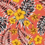 Svart vit tropisk sidaguling blommar röd bakgrund stock illustrationer