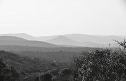 Svart & vitt afrikanskt landskap arkivfoto