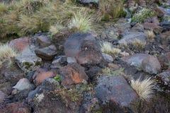 Svart vulkaniskt vaggar Fotografering för Bildbyråer