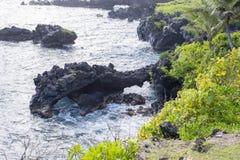 Svart vulkaniskt vaggar bildande i Hawaii Royaltyfri Fotografi