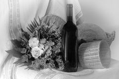 svart white Arkivfoto