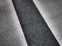 svart white Fotografering för Bildbyråer