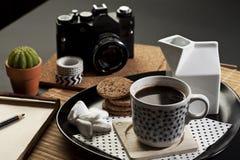 svart white Arkivfoton