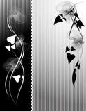 svart white för bakgrund Arkivfoton