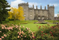 svart white för reflexion för slottschackstycke Kilkenny ireland Royaltyfria Foton