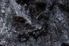Svart wood kol royaltyfria foton