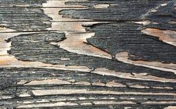 Svart wood vägg Arkivfoton