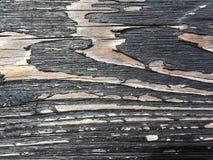 Svart wood vägg Royaltyfri Foto