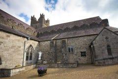 Svarta Abbey Ireland Royaltyfri Fotografi