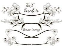 Svarta blom- textavdelare för vektor Blommadesignbeståndsdelar stock illustrationer