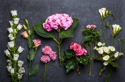 svarta blommor för bakgrund Royaltyfri Fotografi