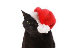 Svarta Cat Santa - gullig jul katt, julhusdjur med jultomten C Royaltyfri Fotografi