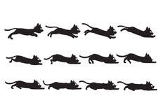 Svarta Cat Sliding Sprite Arkivbild