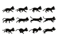 Svarta Cat Transition från att gå till att köra Sprite Royaltyfria Bilder