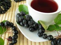 svarta chokeberries bär fruktt tea Royaltyfri Bild