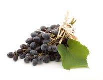 svarta druvor Arkivbilder