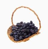svarta druvor för korg arkivfoto