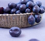 Svarta druvor i en silverkorg på en grå bakgrund arkivfoto