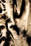Svarta färgpulverdroppar på gammalt blöter papper Royaltyfria Foton