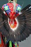 svarta fjädrar royaltyfri bild