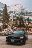 Svarta Ford Mustang GT 5 0 resande till och med den Yosemite nationalparken Royaltyfri Foto
