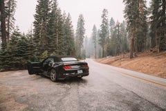 Svarta Ford Mustang GT 5 0 resande till och med den Yosemite nationalparken Royaltyfri Bild