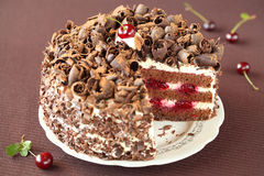 Svarta Forest Cake Arkivbild