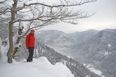 Svarta Forest Hiker i vinter Royaltyfria Bilder