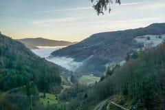 Svarta Forrest Valle med dimljus från solen i aftonvinterkänslan royaltyfria bilder