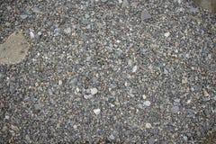 svarta gåstenar för seashore Royaltyfri Bild