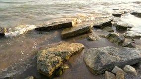 svarta gåstenar för seashore stock video