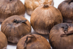 Svarta Garlics på vit bakgrund Royaltyfri Foto