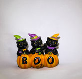 3 svarta katter på allhelgonaaftonen arkivbilder