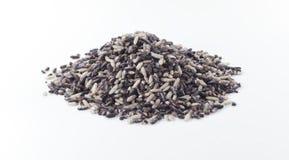 Svarta limaktiga ris (svarta klibbiga ris, svarta ris) Royaltyfria Foton