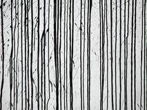 svarta linjer royaltyfria bilder
