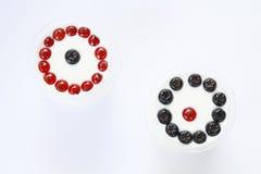 Svarta och röda bär Arkivfoto