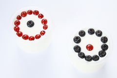 Svarta och röda bär Royaltyfri Foto