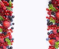 Svarta och röda bär som isoleras på vit Björnbär, vinbär och hallon Collage av olika frukter och bär arkivfoto