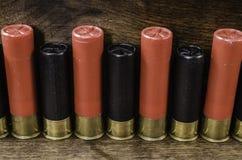 Svarta och röda skal för hagelgevär 12-Gauge Fotografering för Bildbyråer