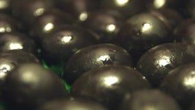 Svarta oliv på en grön bakgrund 2 skott stock video