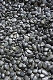 svarta pebbles för bakgrund Royaltyfri Bild