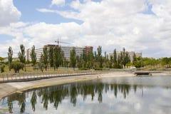 Svarta popplar över en sjö och en urbanisering Arkivfoto