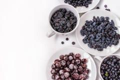 Svarta russin, svarta vinbär, kaprifol och blåbär på vit bakgrund royaltyfria bilder