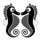 Svarta seahorses Royaltyfri Foto