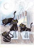 Svarta tillfälliga katter på tak #2 Royaltyfria Foton