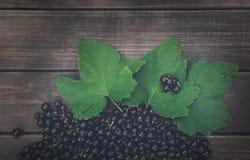 Svarta vinbär överhopar closeupen på lantlig wood bakgrund Royaltyfria Bilder