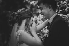 Svarta vita fotopar ansar och bruden på bakgrundssidorna Arkivbilder