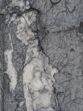 Svarta vita grå färger polerade väggen för granitmarmorstenen - bakgrund Royaltyfria Bilder