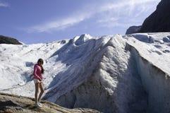 Svarticen στη Νορβηγία στοκ εικόνα